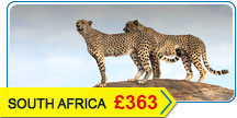 South Africa Flights Offers